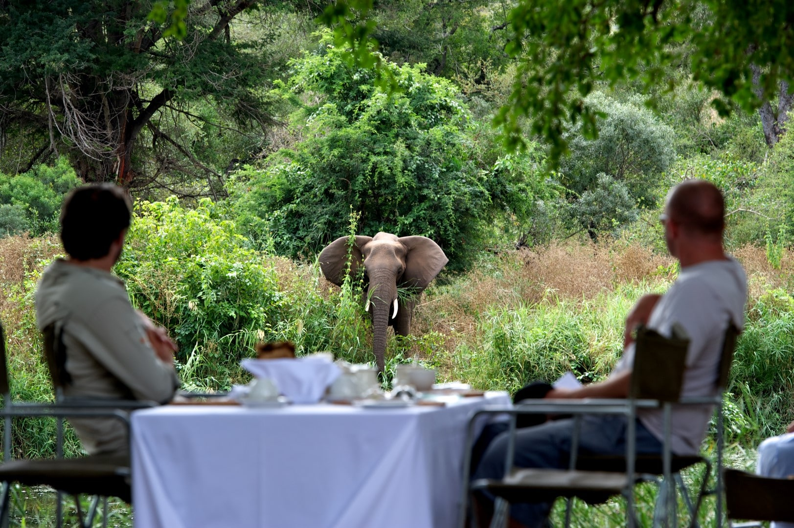 Lunch at Singita Lebombo