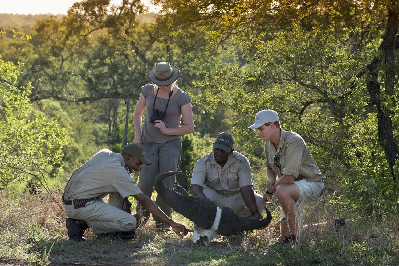 Tracking and identification at Tanda Tula Field Camp