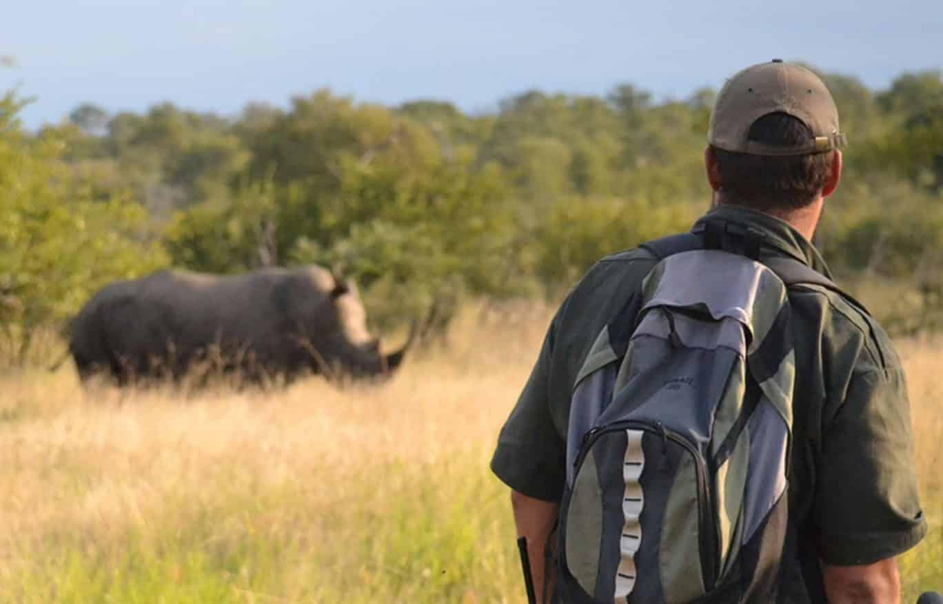 Walking the Central Kruger