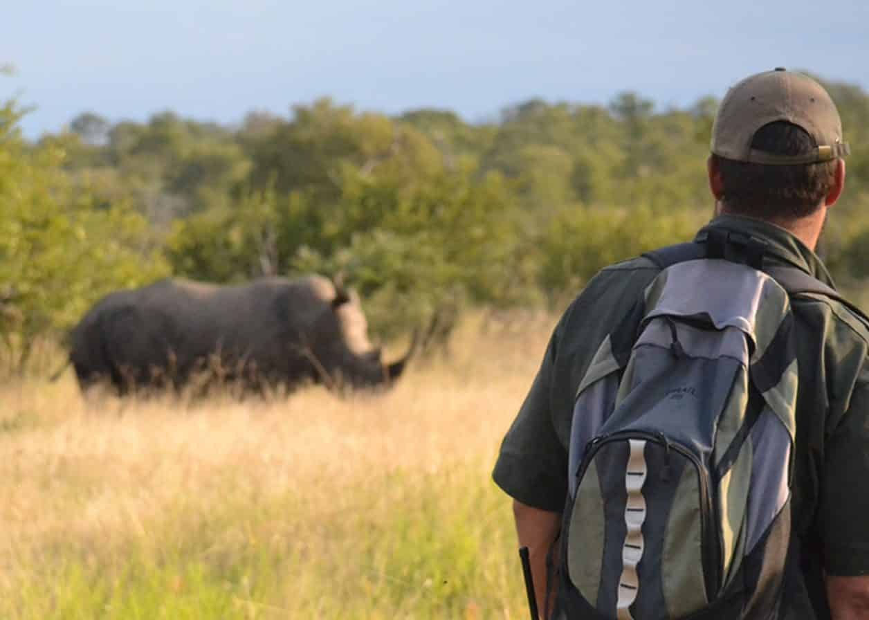 Rhino at Africa on Foot