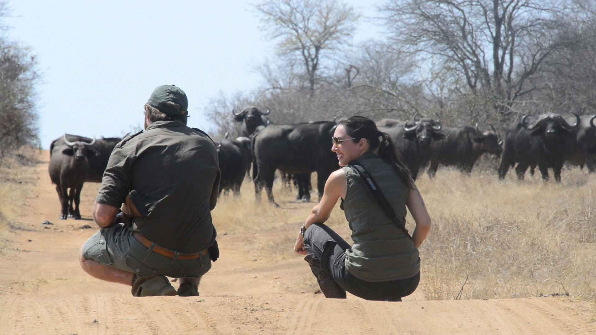 Buffalo on foot at Africa on Foot