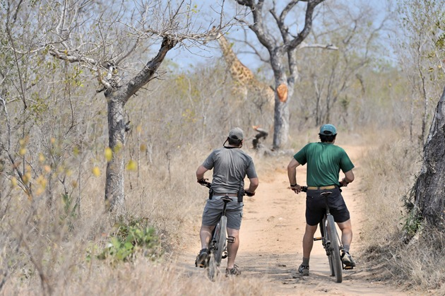 Cycling in the bush at Singita Lebombo