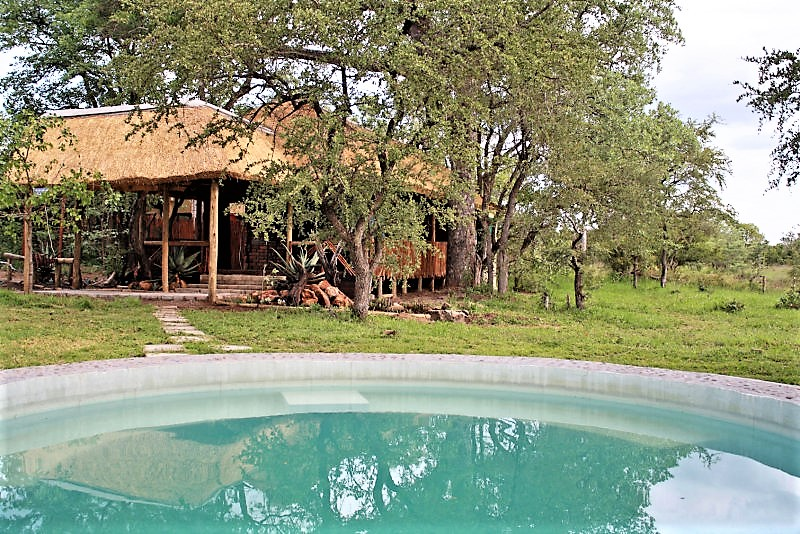 Shindzela lodge pool