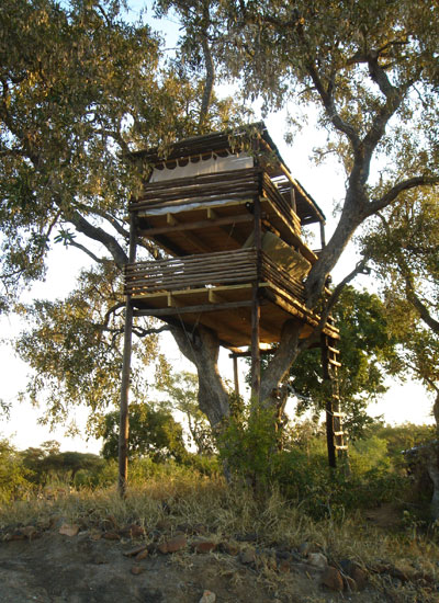 Cracking sleep-outs at Umlani's treehouses