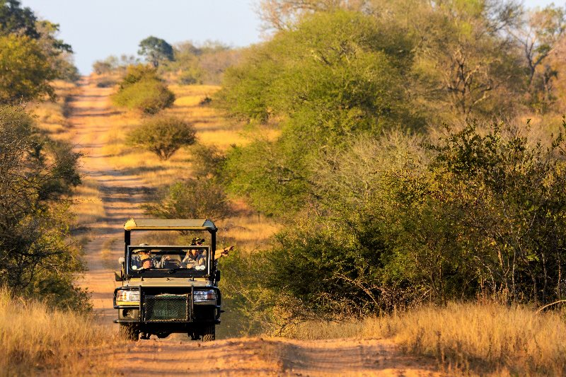 Firebreak game drive at Rhino Post