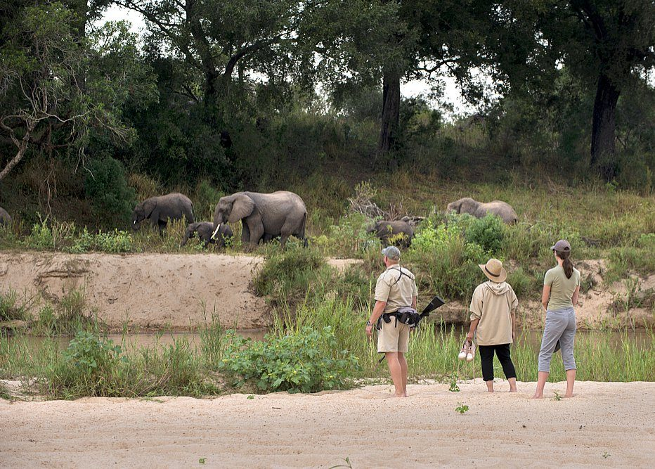 Walking at Dulini River Lodge