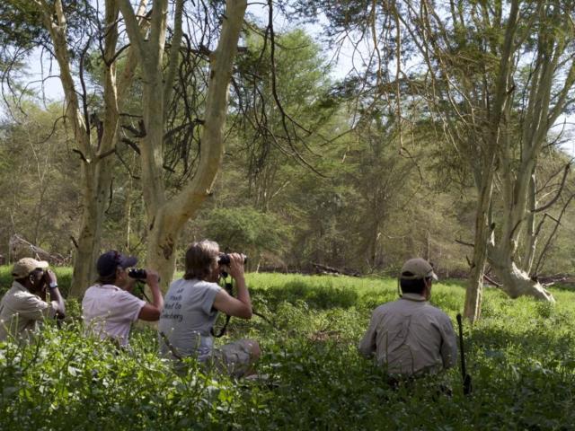 Sightings in the Makuleke fever tree forest