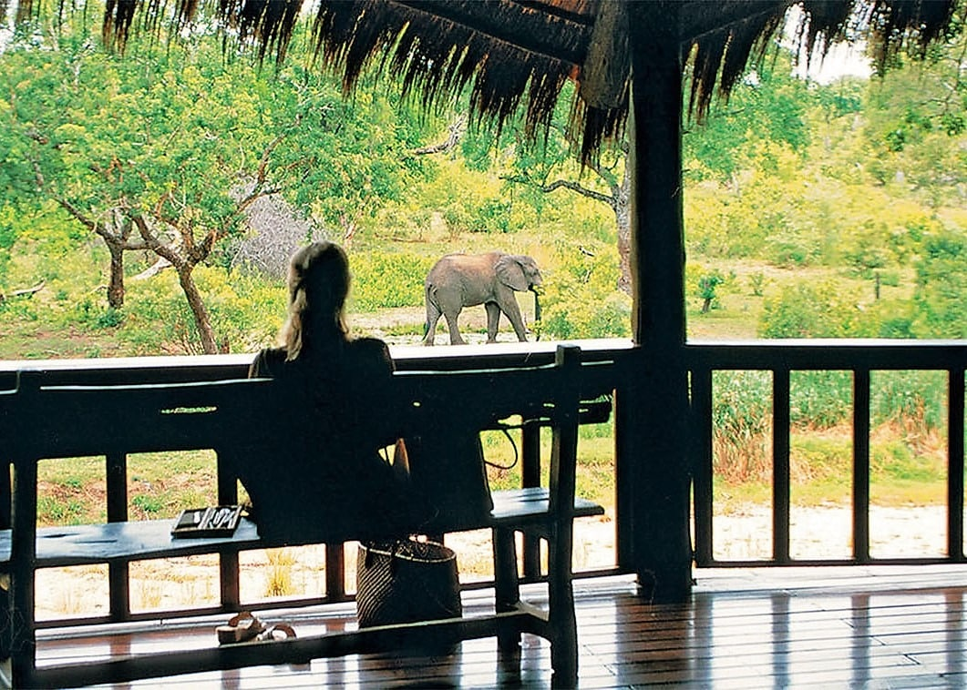 Elephant from the deck at Ulusaba Safari Lodge