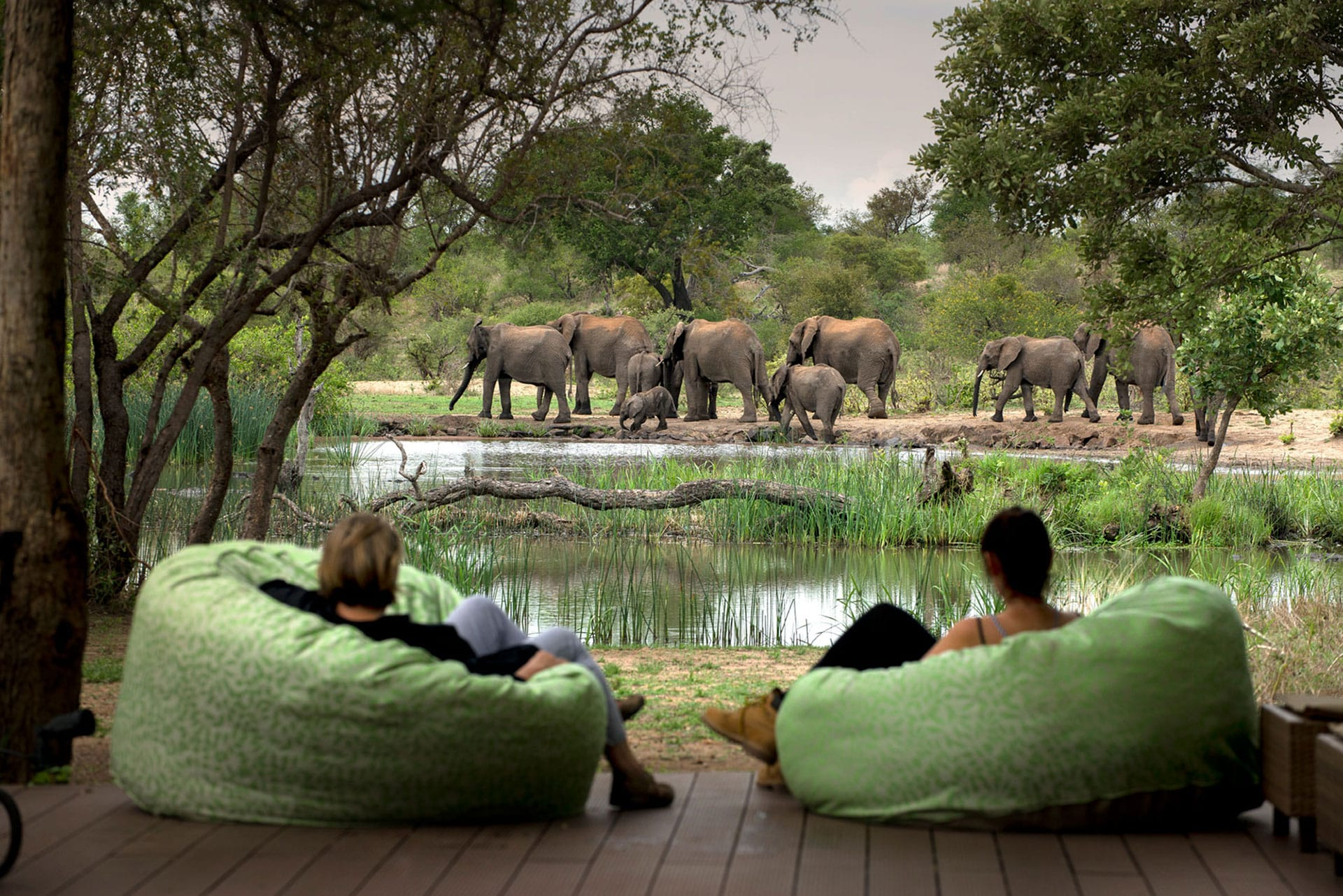 Tanda Tula Safari camp waterhole view