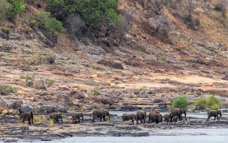 Elephants from Olifants lookout, sheldrickfalls