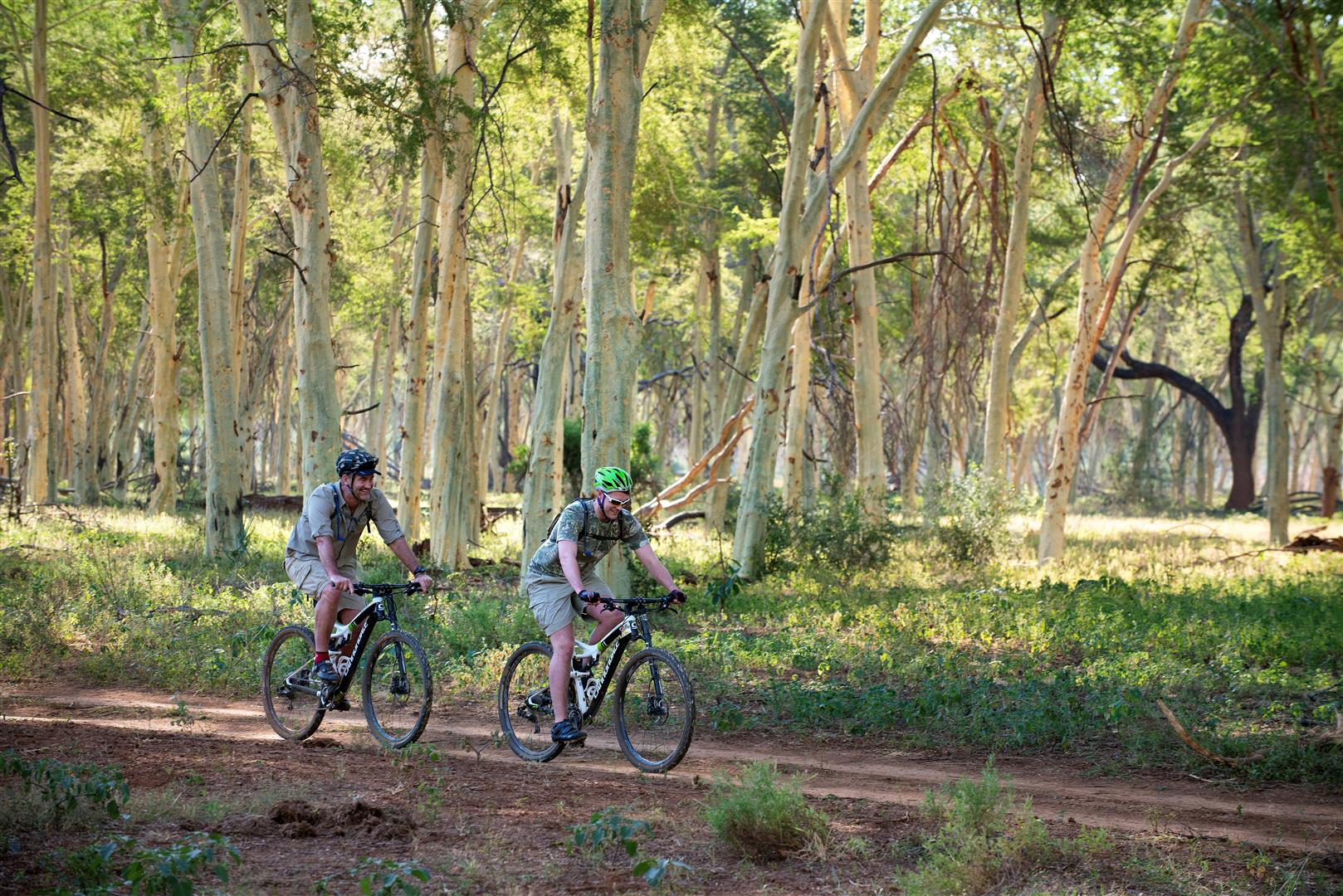 Cycling the fever tree forest in Makuleke