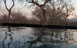Raptors Lodge pool