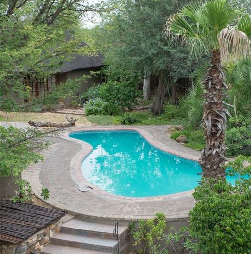 Kambaku Safari Lodge pool