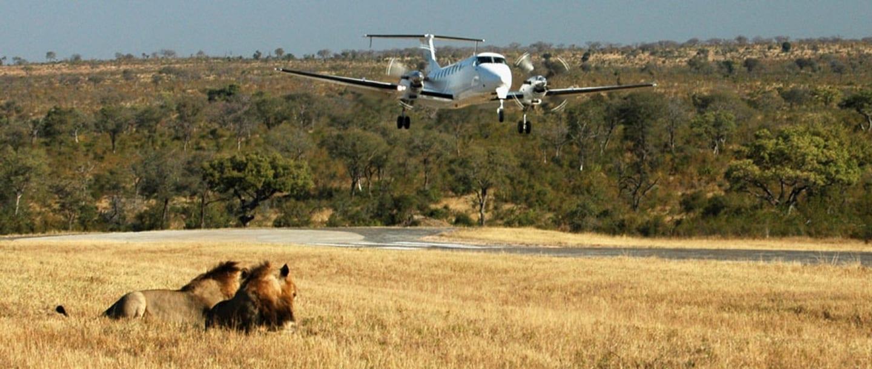 Ulusaba airstrip