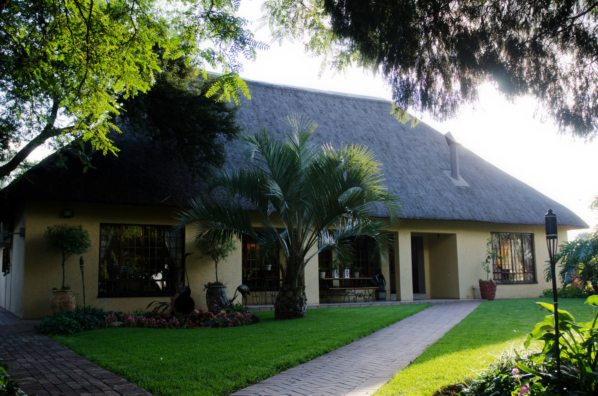 Safari Club near ORT International airport