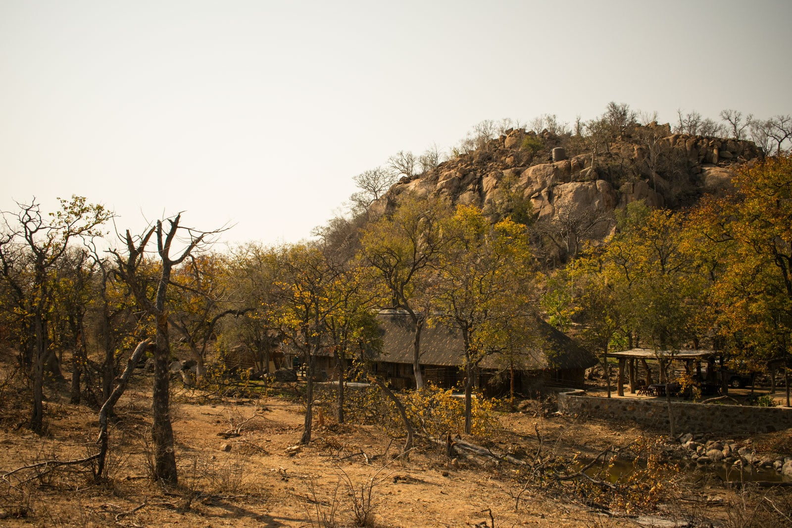 Chacma Bush Lodge is set below a rocky Balule outcrop