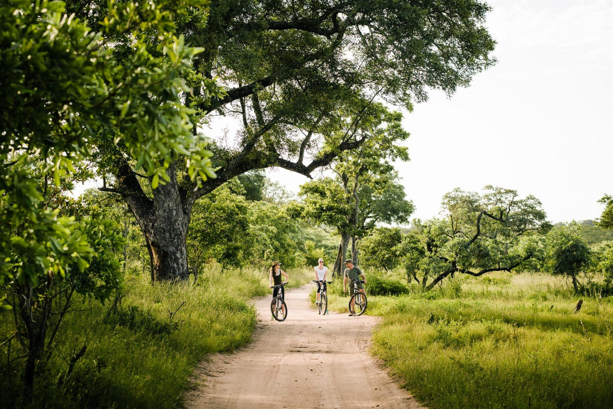 Cycling at Singita Boulders