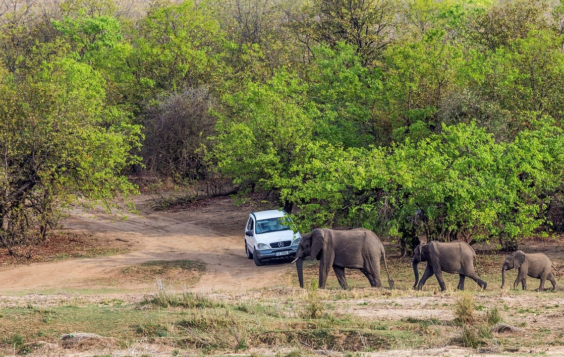Self driving the Kruger