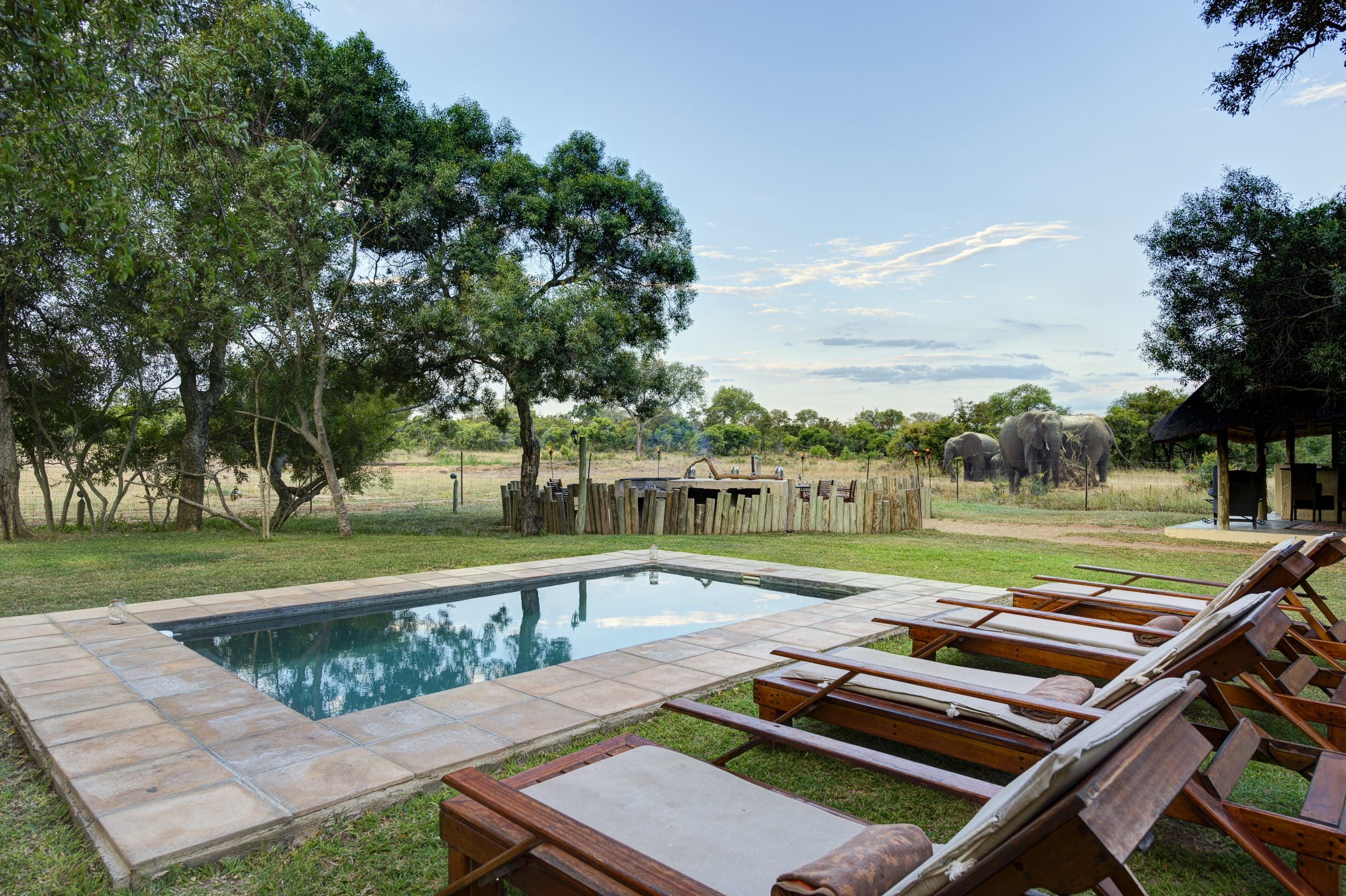 Swimming pool and gardens at Tintswalo