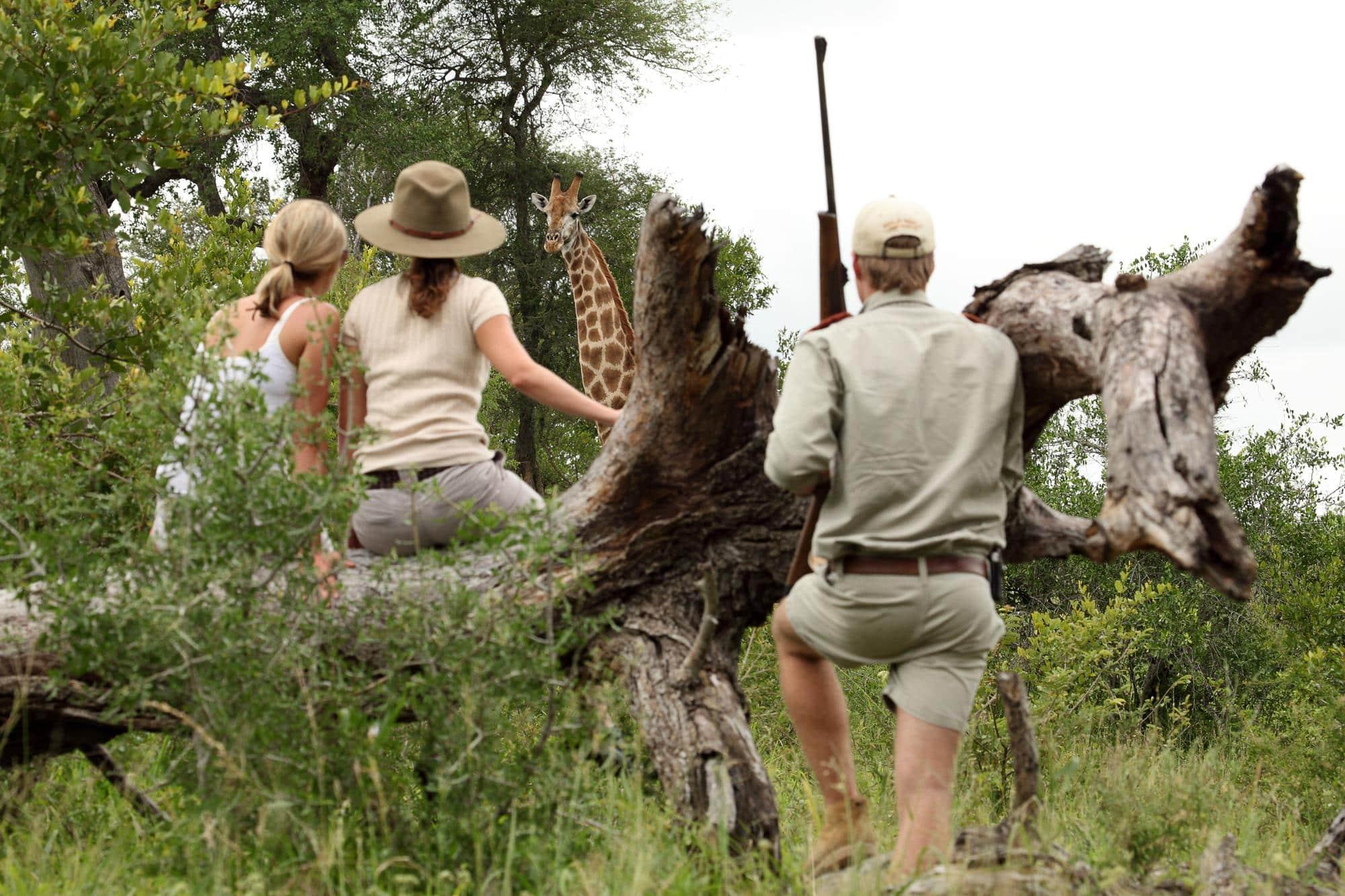 Bush walk at MalaMala
