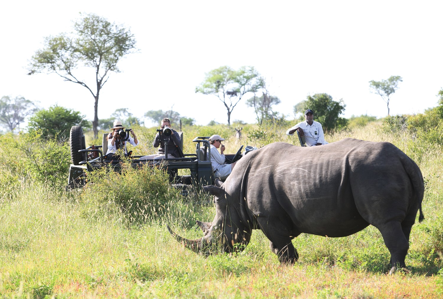 Londolozi photographic safari vehicle with rhino