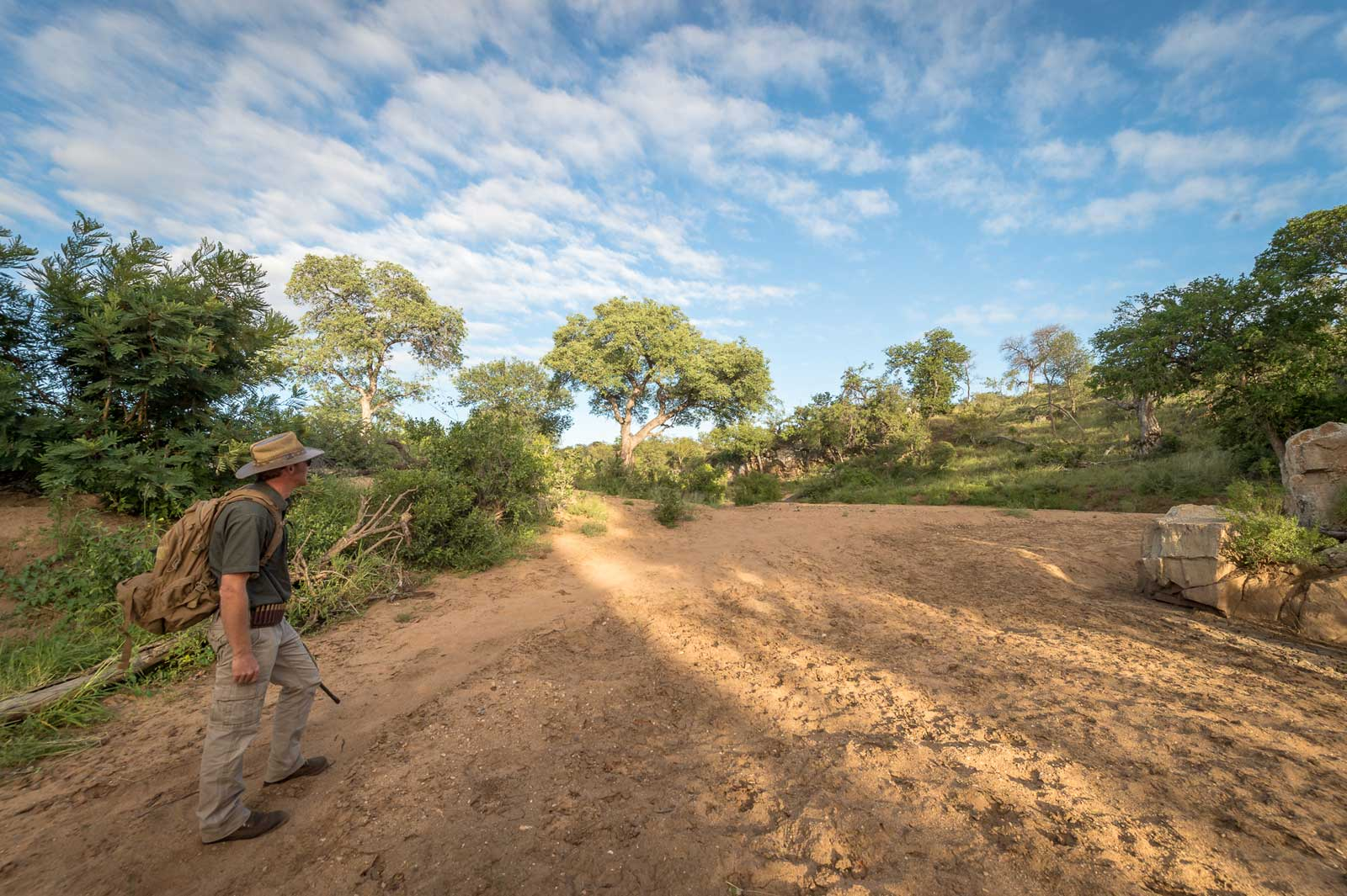 Walking the Klaserie at Ivory Wilderness