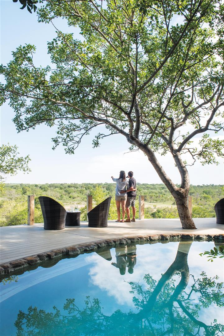 Leopard Hills pool