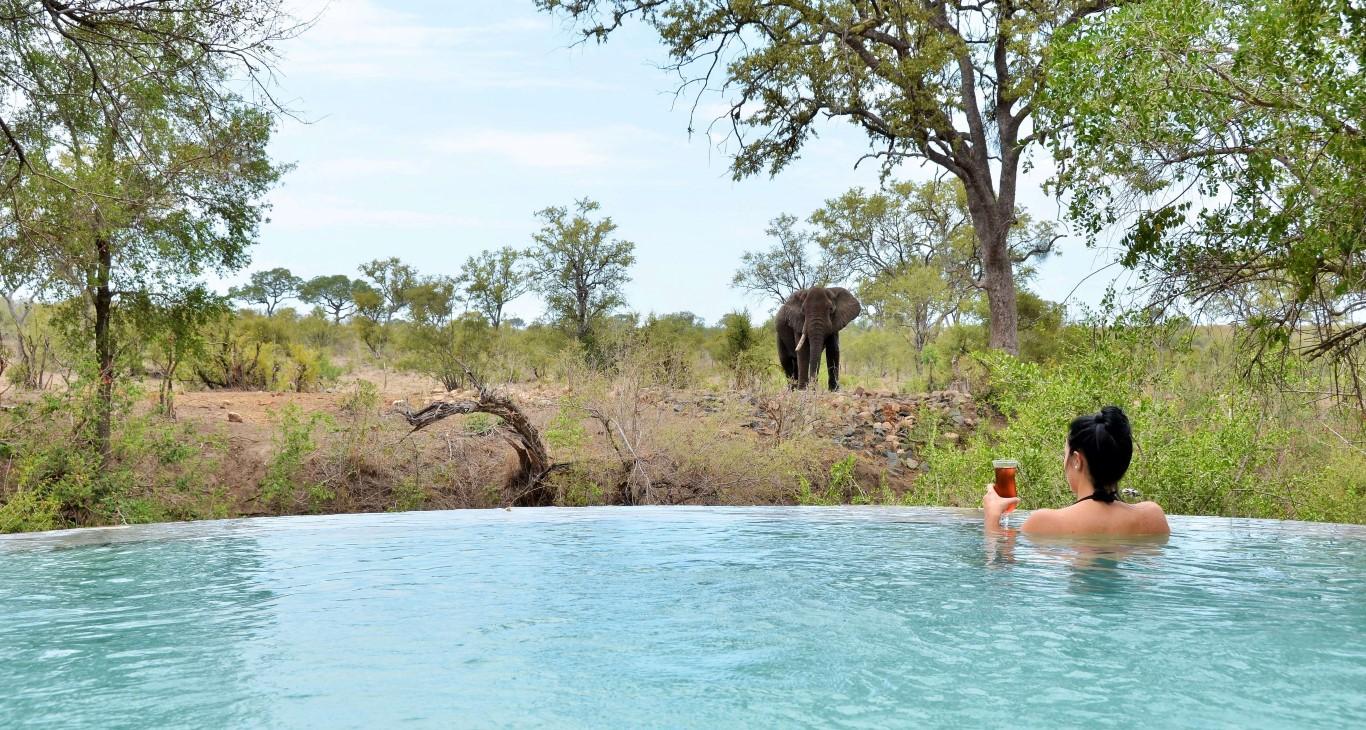 Hoyo Hoyo Tsonga pool