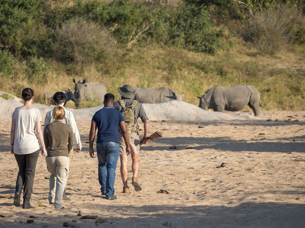 Walking at Jock Safari Lodge