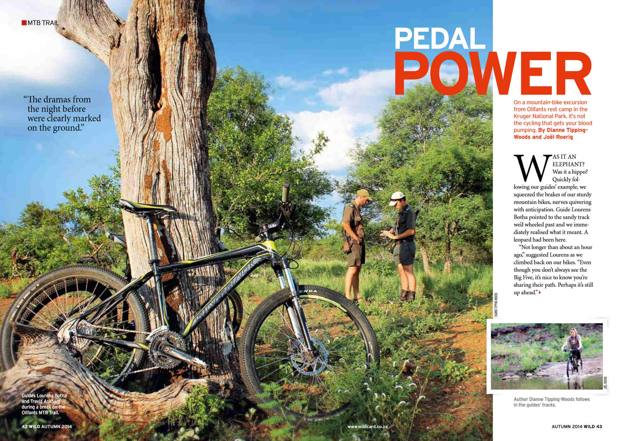 """Pedal power"" article in Wild Car magazine"